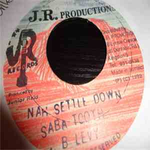 Saba Tooth & B Levy - Settle Down download mp3 album