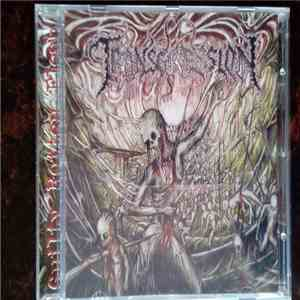 Transgression  - Guilty Rotten Flesh download mp3 album