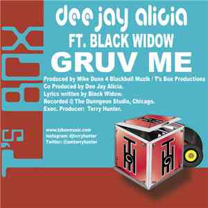 Dee Jay Alicia Feat. Black Widow  - Gruv Me download mp3 album