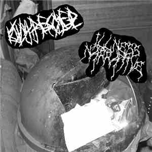 Infected Butthole / Illness Narrative - Split download mp3 album